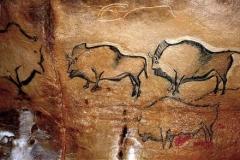 bisontes-cueva